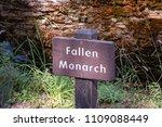 mariposa grove yosemite ... | Shutterstock . vector #1109088449