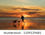 Man Running With Two Dogs On...