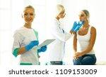 permanent makeup for eyebrows.... | Shutterstock . vector #1109153009