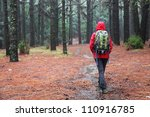 Hiking in rain. Hiker walking on pine forest path on rainy day wearing raincoat - stock photo