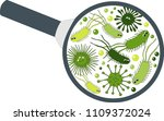bacterial microorganism in a... | Shutterstock .eps vector #1109372024