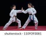 children are training karate... | Shutterstock . vector #1109393081