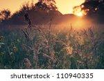 Sunrise Light