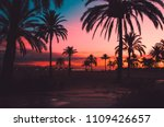 Background sunset with silhouette palm trees