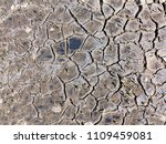 texture of dried cracked... | Shutterstock . vector #1109459081