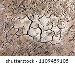 texture of dried cracked... | Shutterstock . vector #1109459105