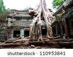ta prohm temple in the angkor...   Shutterstock . vector #110953841
