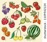 set of different berries.... | Shutterstock .eps vector #1109542124