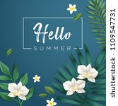 hello summer vector... | Shutterstock .eps vector #1109547731