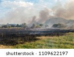 forest wildfire. burning field... | Shutterstock . vector #1109622197