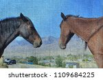 Two Wild American mustang horses, facing each other against backdrop of Virginia Ranges Mountains in Nevada Wild West; image over blue denim jeans fabric image background