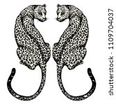 the couple jaguars hand drawn... | Shutterstock .eps vector #1109704037