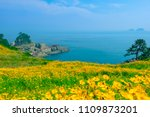 sinseondae cliff and...   Shutterstock . vector #1109873201
