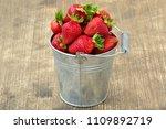 small metal bucket with fresh... | Shutterstock . vector #1109892719