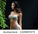 asian sexy woman in bra lace... | Shutterstock . vector #1109895575