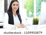 modern business woman in the... | Shutterstock . vector #1109903879