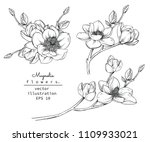 Stock vector sketch floral botany collection magnolia flower drawings black and white with line art on white 1109933021
