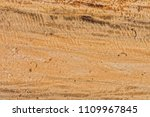 freshly log cut texture and... | Shutterstock . vector #1109967845