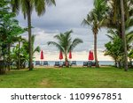 group of sunbeds and parasols... | Shutterstock . vector #1109967851