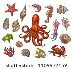 set sea animals. shell ... | Shutterstock .eps vector #1109972159