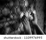 little girl hand holding on...   Shutterstock . vector #1109976995