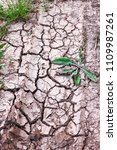 Small photo of Cracked ground, path, soil with dry grass. Ecology concept. Cracked earth texture background with grasses. Dry field, water, land, sand. Land during drought. Abstract surface, material, wallpaper.