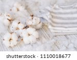 delicate white cotton flowers... | Shutterstock . vector #1110018677