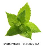 green mint leaves isolated on a ... | Shutterstock . vector #1110029465