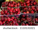 fresh red cherry in the plastic ... | Shutterstock . vector #1110131021