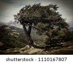 gr20 corse corsica france  | Shutterstock . vector #1110167807