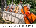 Music And Nature Concept....