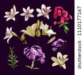 lilies and phloxes. a set of... | Shutterstock .eps vector #1110177167