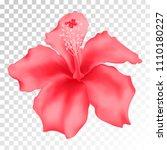 pink hibiscus isolated vector ... | Shutterstock .eps vector #1110180227