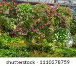 flower display in hanging... | Shutterstock . vector #1110278759