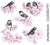 set of birds hand drawn in... | Shutterstock .eps vector #1110282797