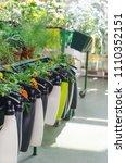 shelf in garden market | Shutterstock . vector #1110352151