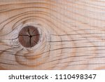 a close up of a tree branch on... | Shutterstock . vector #1110498347