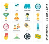 set of 16 icons such as goal ...