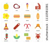 set of 16 icons such as crab ... | Shutterstock .eps vector #1110581081