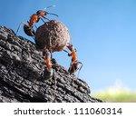 team of ants rolls stone uphill ... | Shutterstock . vector #111060314