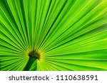 abstract green striped from... | Shutterstock . vector #1110638591