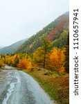 mountains with colorful autumn... | Shutterstock . vector #1110657941