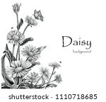 daisy flowers hand drawing... | Shutterstock .eps vector #1110718685