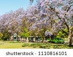 lisbon  portugal   may 19  2017 ... | Shutterstock . vector #1110816101