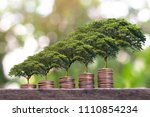 plant growing  on money coin... | Shutterstock . vector #1110854234