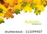 Autumn Leafs On White Background