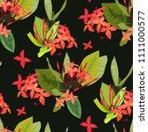 ixora tropical flowers seamless ... | Shutterstock .eps vector #1111000577