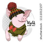 vector pig with knitted hat and ... | Shutterstock .eps vector #1111012157
