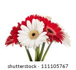 White And Red Flowers  Bouquet...