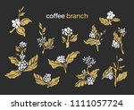 vector set of natural coffee... | Shutterstock .eps vector #1111057724
